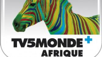 TV5MONDE lance la première Web TV entièrement dédiée au continent africain.