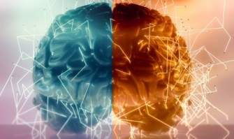 Découverte Neuroscience: Comment pourrait-on guérir dune paralysie suite à un AVC