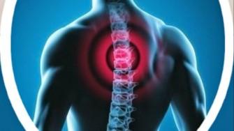 Journées d'information sur l'ostéopathie