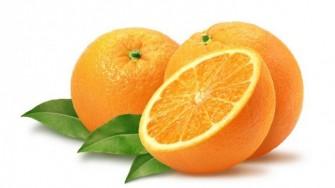 Tout sur... l'orange : Une baie particulière