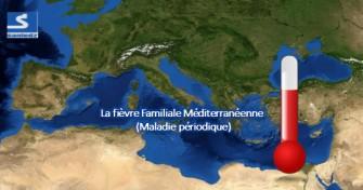 La maladie périodique / Fièvre Méditerranéenne Familiale (FMF)