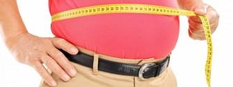 Obésité : Réduire la graisse sans réduire l'appétit