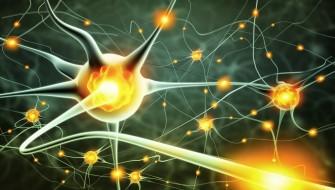 Épilepsie réfractaire : Le CBD réduit considérablement les crises