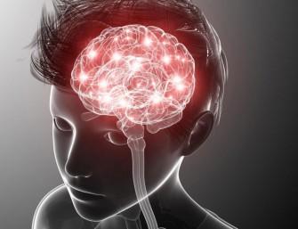 Les crises dabsences épileptiques